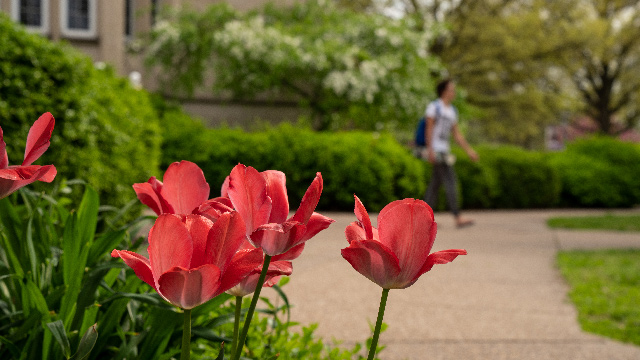 Summer flowers in front of Olmsted Administration Hall